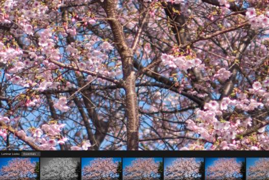 スクリーンショット 2019-03-02 23.40.05
